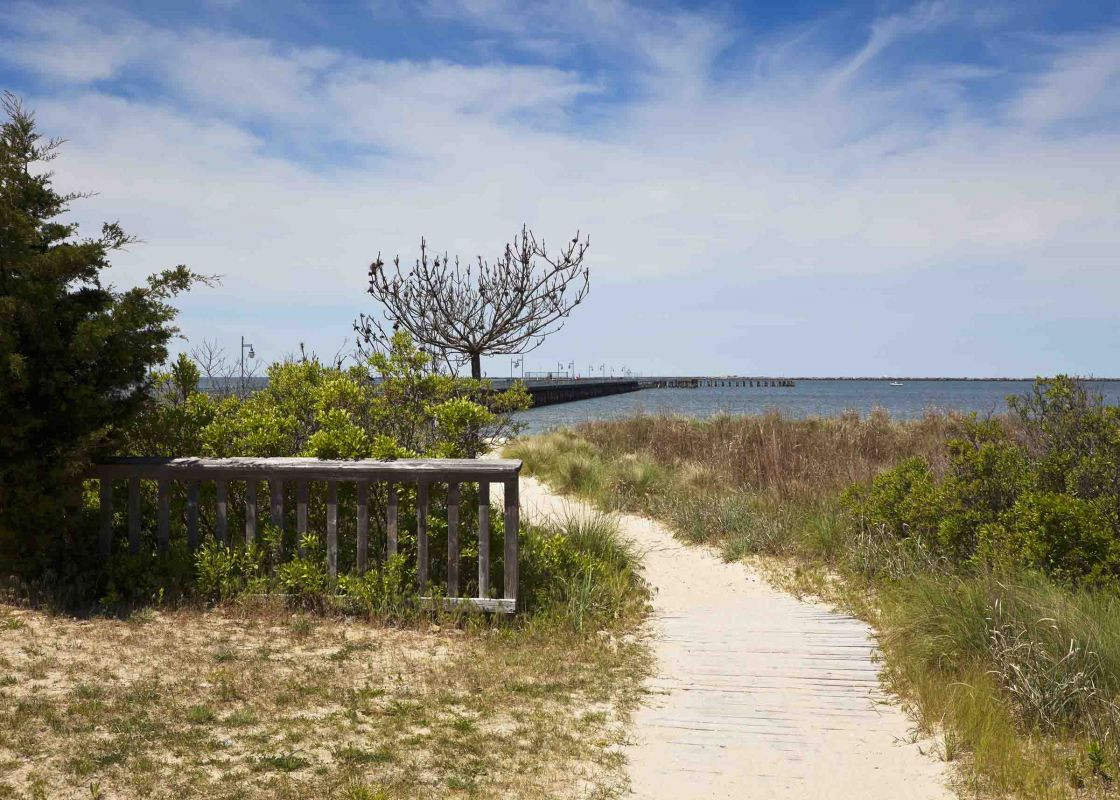 Cape Henlopen State Park in Lewes